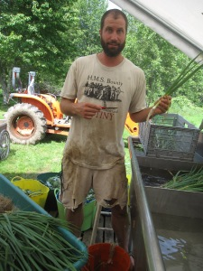 """We don't often let crazy pirate farmer Bill wash the veggies, but it was a hot Saturday and we though he could use some time in the cool(er) wash shed.  Here he is, pointing at a scallion with his knife to ask """"is it clean enough for you?!"""""""