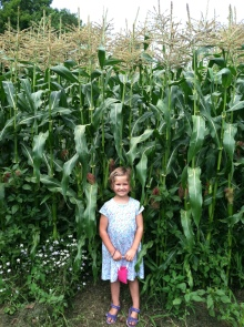 CJ and the corn