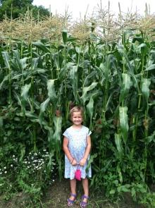 CJ and the corn